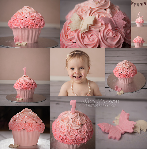 the cake copy