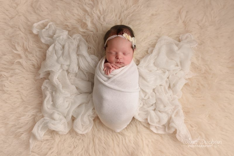 Everly brooklyn ny newborn session